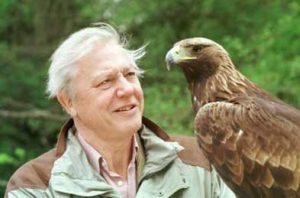 Attenborough Photo